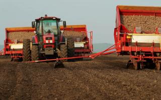 Нормы внесения минеральных удобрений под картофель