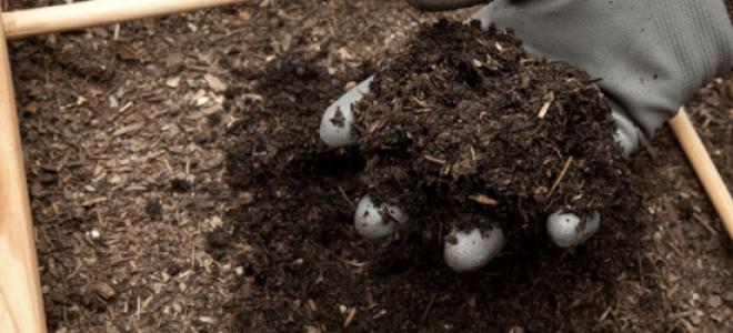 Как приготовить компост на даче