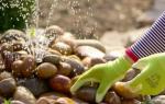 Как построить фонтан на даче своими руками