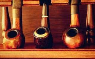 Как вырастить табак курительный на дачном участке