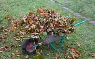 Капустные листья как удобрение
