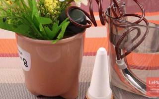 Автоматическая поливалка для комнатных цветов