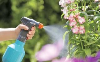 Самодельный опрыскиватель для личного сада огорода