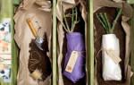 Как сохранить саженец яблони до посадки весной