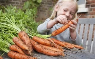 Как вырастить здоровую морковь