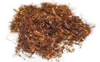 Чем отличается табак от махорки
