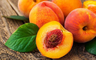 Посадка персика косточкой осенью