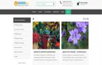 Дача огород самое интересное в блогах