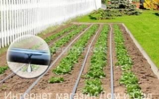 Поливочные системы для сада и огорода
