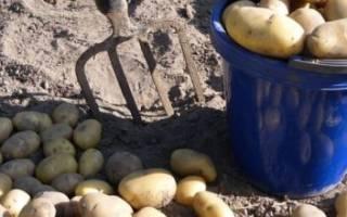 Какое удобрение лучше для картофеля при посадке