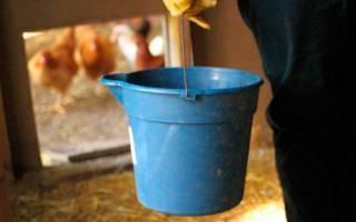 Чем обработать сарай от инфекции