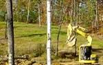 Удаление поросли деревьев
