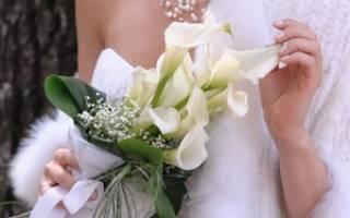 Цветы каллы символизируют