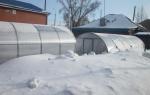 Как построить теплицу для зимнего выращивания