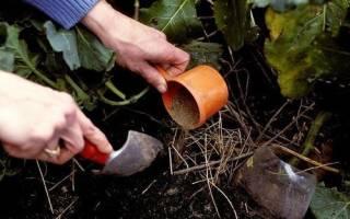 Фосфорное удобрение своими руками