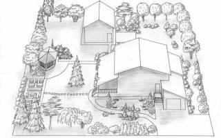 С чего начать планировку земельного участка