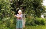 Обработка плодовых деревьев осенью железным купоросом дозировка